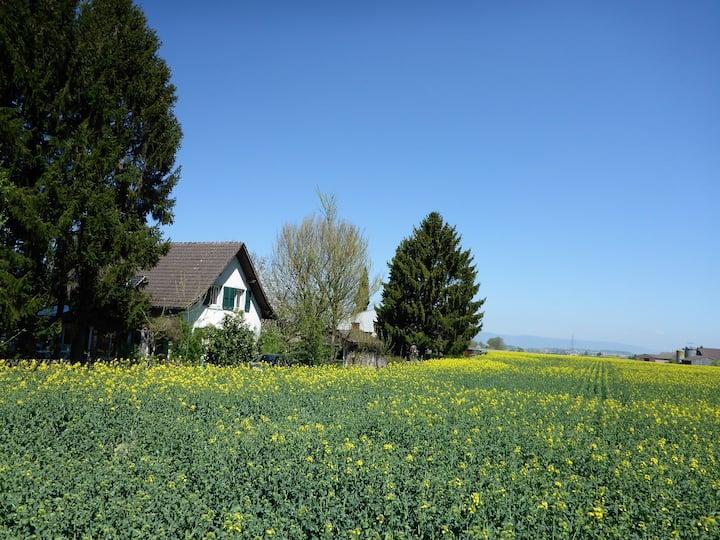 Lausanne garden home