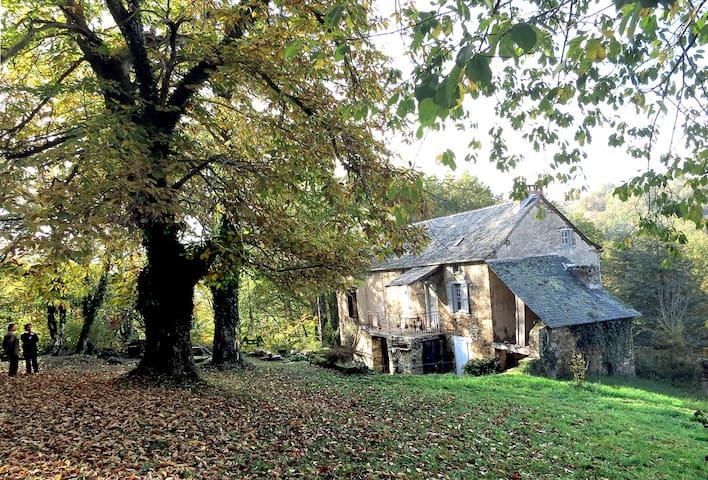 Maison dans les bois  (Ledergues 12170) - Naussac