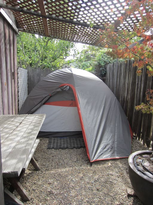 The Winter Guest Tent