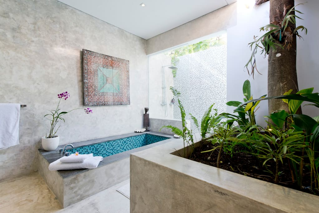 indoor outdoor bathroom with a beautiful internal tree. Safe and pure drinking water from all taps