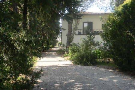 Masseria la sterpina - 聖阿爾坎傑洛(Sant'Arcangelo)