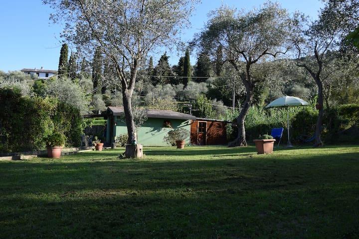 Il rifugio tra gli ulivi - Santa Margherita Ligure - Ev