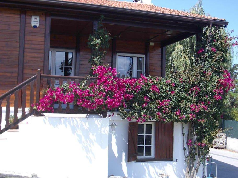 country villa maisons louer sintra lisbonne portugal. Black Bedroom Furniture Sets. Home Design Ideas