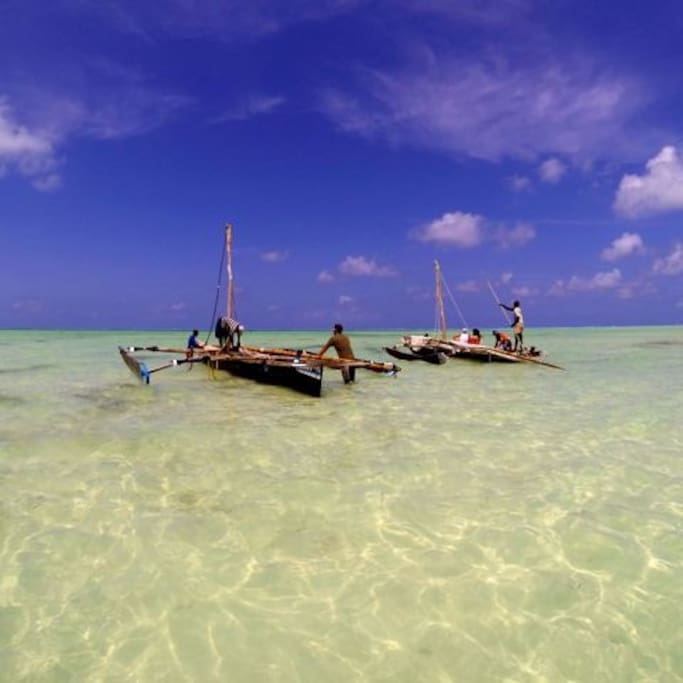 Our snorkeltour
