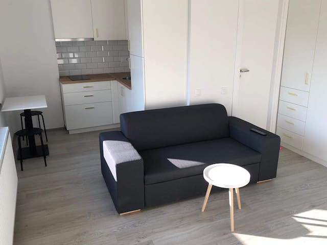 Spacious one bedroom city center flat