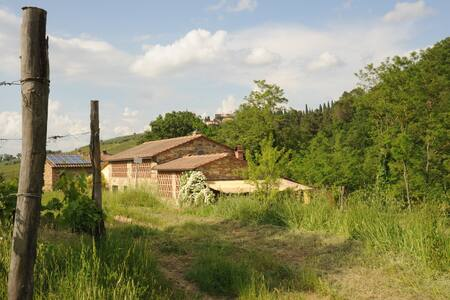 Chianti-Bio-Garden-Kitchenette-Shiatsu-Relax-Art - Greve in Chianti - Bed & Breakfast - 0