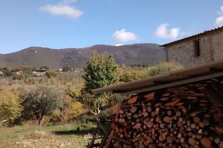 CASA VACANZA vicino ORVIETO - Montecchio - Appartement