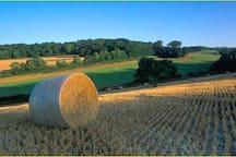 Countryside near Littlebourne