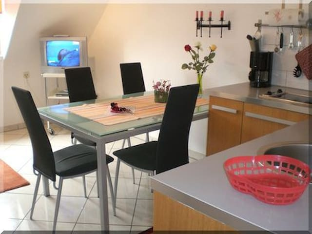 Downtown 3-room-apartment  - Freiburg - Appartement