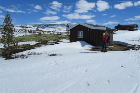 Cozy cabin in Rondane by Høvringen. - Høvringen