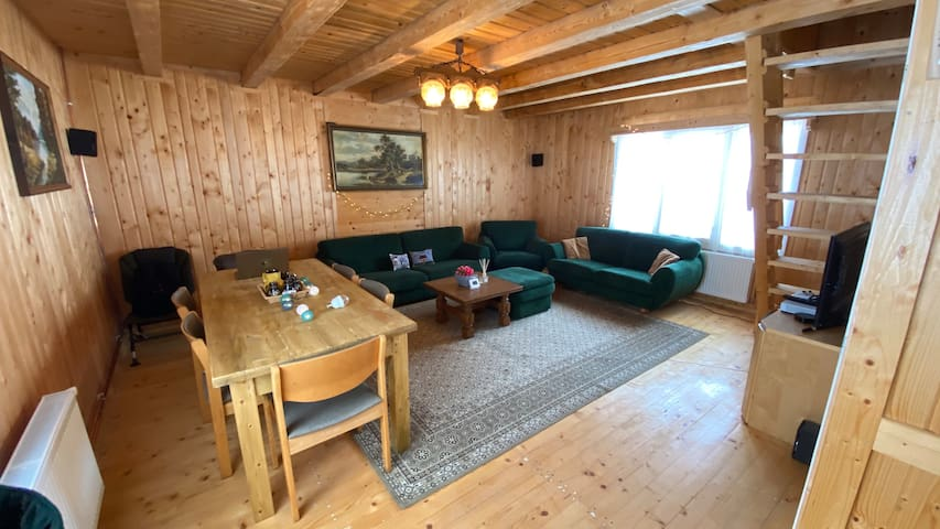 Cosy wooden cabin in the Apuseni mountains