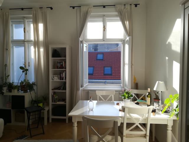 Cozy apartment in the heart of Vienna
