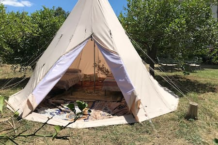 LuxuryTipi in the middle of an organic lemon grove
