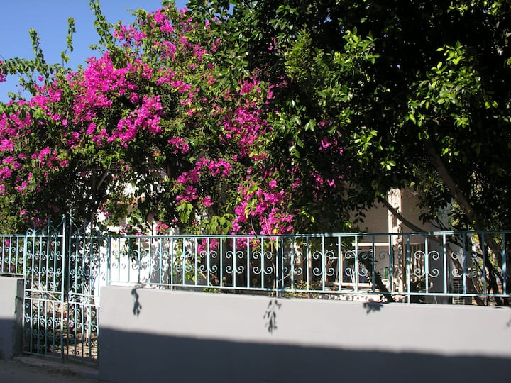 Villa Depy