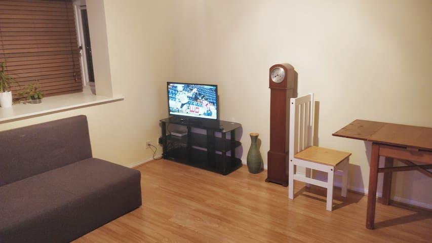 Cosy 1-bedroom flat.  Near Wembley Stadium.