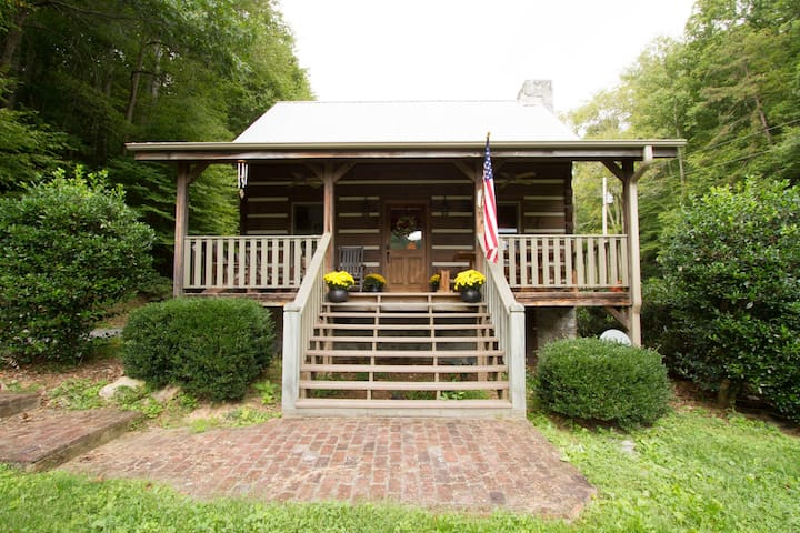 Private Family Log Cabin - Marshall - House