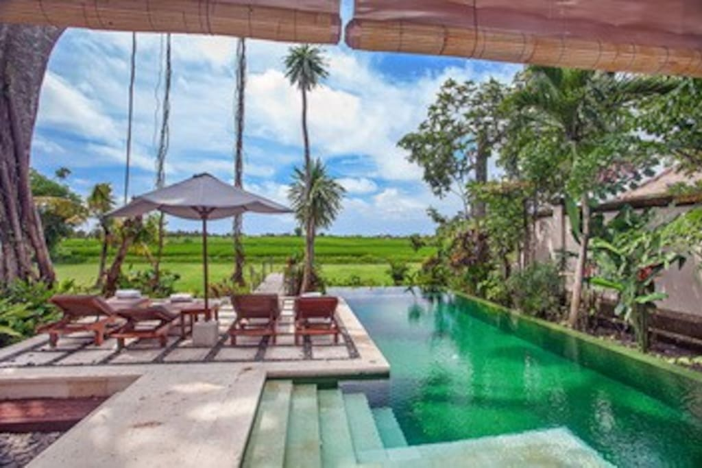 Huge private pool with sunbeds , sunset and ricefield views