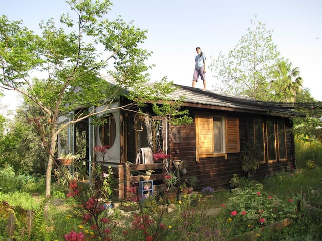 Cute wooden house for rent  - Kfar Sirkin - Treehouse