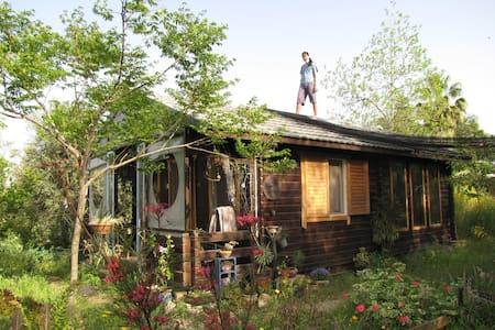 Cute wooden house for rent  - Kfar Sirkin - Dům na stromě