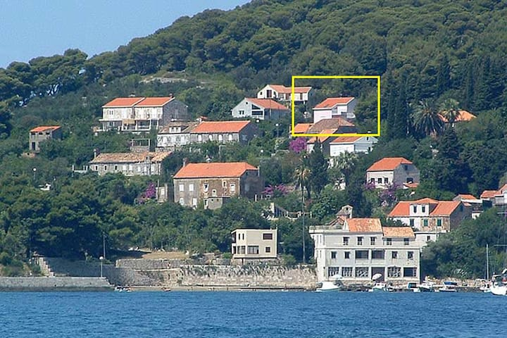 Charming studio in the Dubrovnik island Kolocep,private balcony overlooking sea
