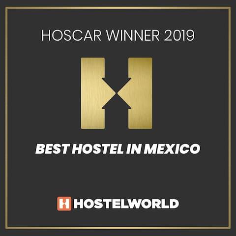 Best Hostel in México 2019!