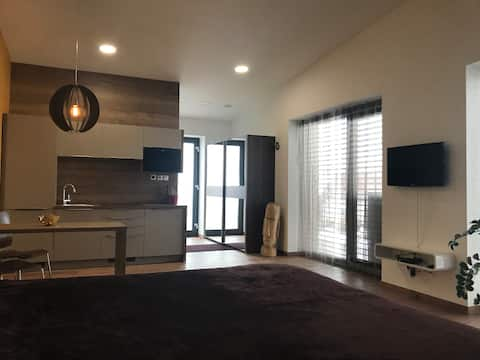 Luxury private apartment near center and river