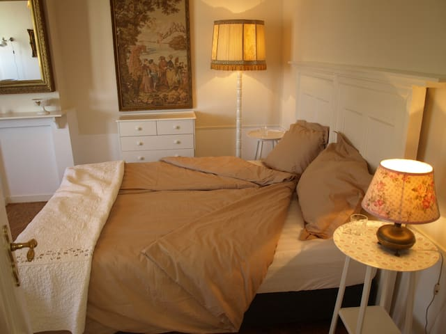 TheHagueMansion City&Beach Room V - The Hague - Bed & Breakfast