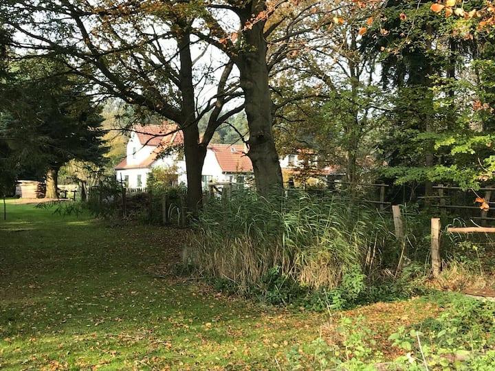 """Historisches Ferienhaus """"Klewerhof"""" Rostock"""