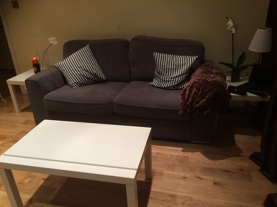 Simple living room, with comfy two seat sofa