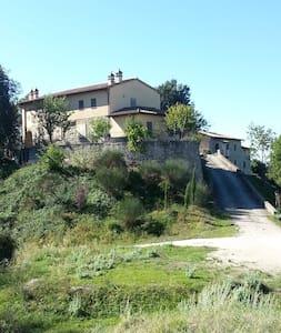 """""""Il Borgo Fiorito"""" - Valfabbrica  - House"""