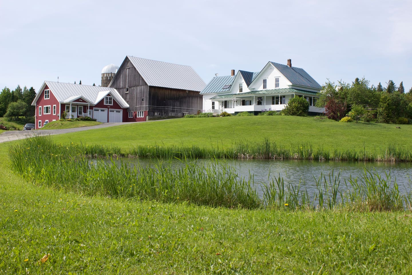 Enjoy fishing or swimming in the pond or looking for frogs with the little ones.