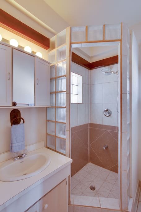 Bathroom area with a full hot shower.