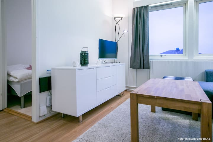 Apartment in the city center of Longyearbyen - Longyearbyen - Apartament