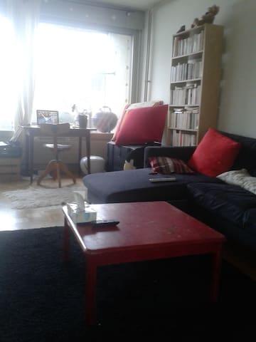 Appartement trois pièces avec vue - Genève - Apartmen