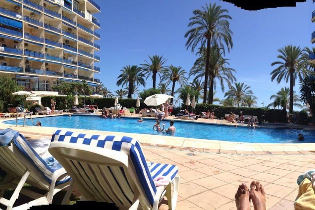 Estudio c ntrico en 1 linea playa appartements louer - Estudios en marbella ...