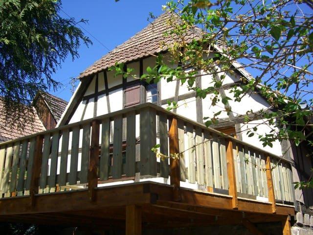 Le Jardin d'Emma - Andlau - Hus