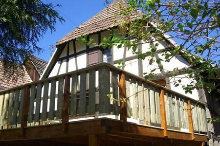 Le Jardin d'Emma - Andlau - Maison