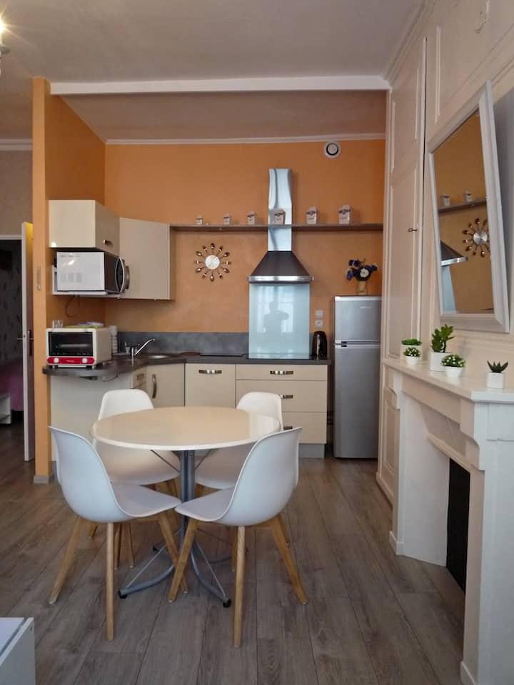 Chaleureux appartement plein cœur de salins