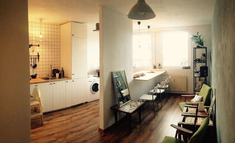 Spacious renovated room near centre + breakfast :)
