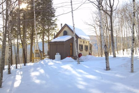 Off Grid Remote Cabin with AMAZING Mountain Views - Andover