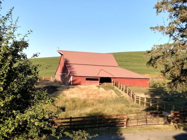 Farm stay 5 miles N of Pullman - No Cleaning Fees