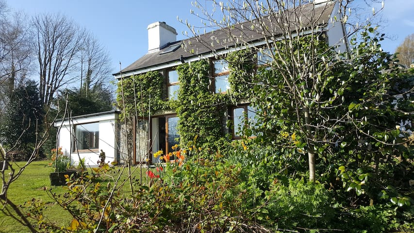 Nant yr Onnen - countryside peace and quiet - Ceredigion - House