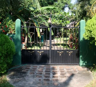 Breathtaking oasis steps from beach - Puerto Arista