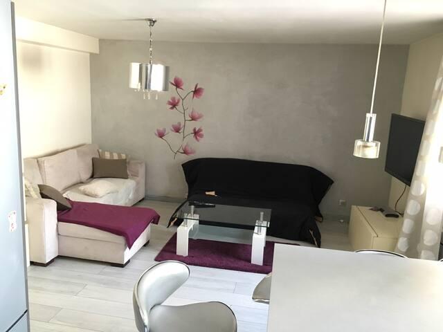 Charmant F2 46m²+ parking / Métro L.8 6pers - Paris - Apartment