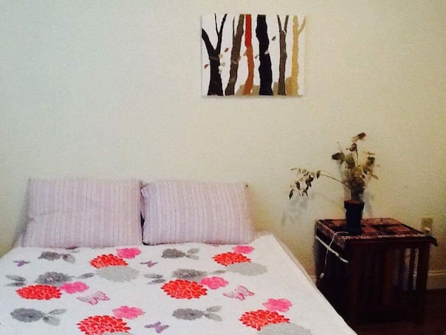 A cozy 1 bed room apt in Shandon