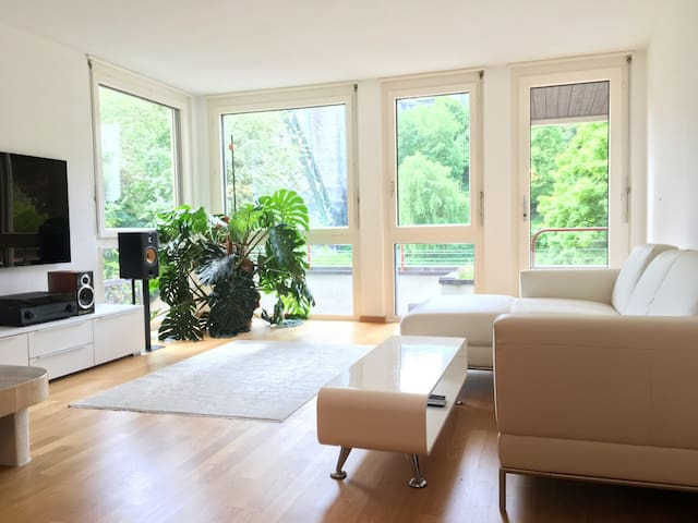 Beautiful, central, riverside apartment with view