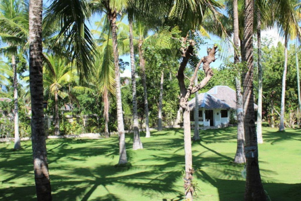 Guesthouse hidden in the coconut garden of White Beach Oceanfront House