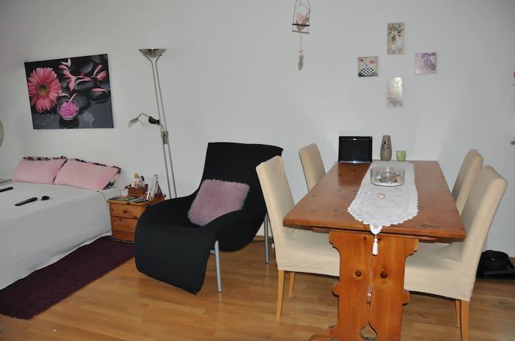 Gemütliches 1-Zimmer-Appartment - München-West