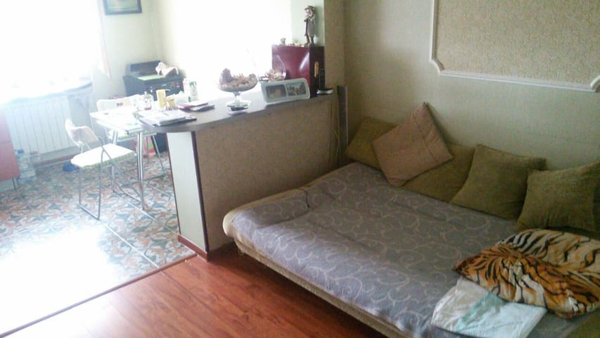 Уютная квартира - VNIISSOK - Apartamento
