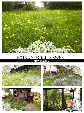 PRETTY COUNTRY COTTAGE IN GORGEOUS SURROUNDING+Spa - Brüssow - บ้าน